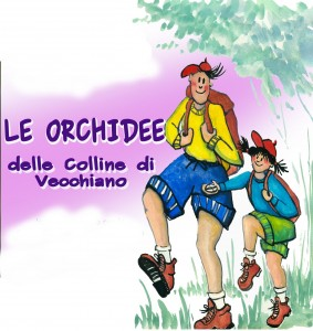 ORCHIDEE0